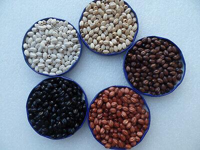 nen gerieft 6 x 9 mm Kugeln Perlen für Rosenkranz basteln (Kranz Basteln)