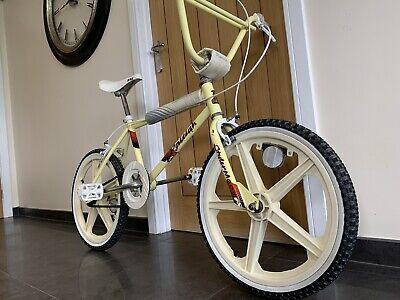 RALEIGH STYLER BMX - AMAZING LOOKING BIKE!