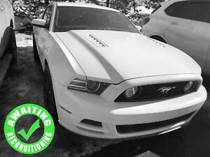 2014 Ford Mustang GT 5.0L Manual| Heat Lth Seat| Shaker| Perf Ho