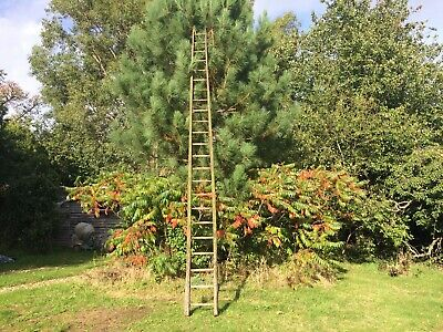 Old Vintage Antique Wood Orchard rung Ladder