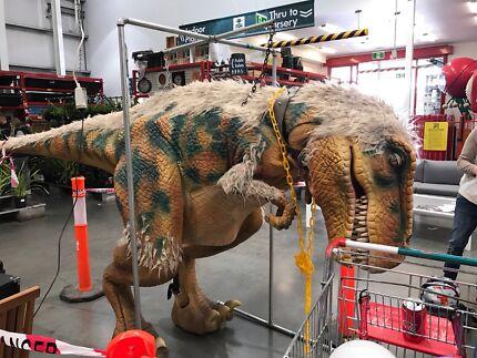 Life size T. rex Dinosaur suit great business opportunity  Ararat Ararat Area Preview