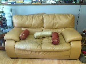 Soft leather couch and loveseat