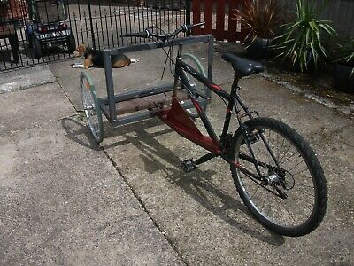 three-wheeled bicycle, unfinished project. vending bike