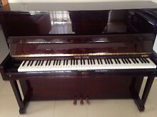 Young Chang upright piano Pemulwuy Parramatta Area Preview