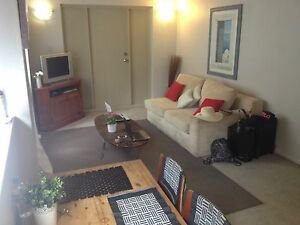 Excellent Semi like 2br furnished unit wifi suit 3-4ppl. Bondi Eastern Suburbs Preview