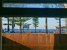 Your room in an amazing location. One step from the beach! Manly Manly Area Preview