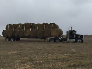 Round Hay Bales for sale