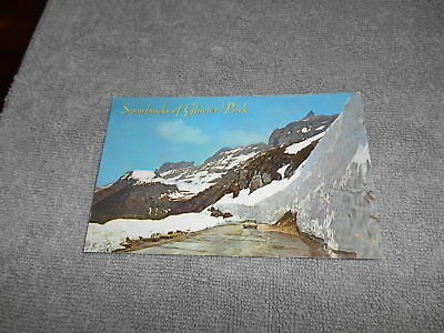 L   Post Card   Snow Banks Glacier Park