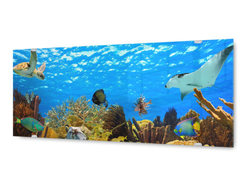 Glasbild Wandbild GLX12568530036 Unterwasser  Welt 125 x 50cm