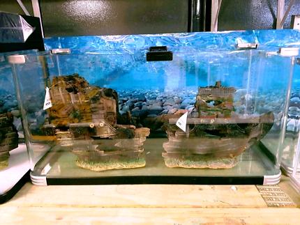 Aquarium 80cm NEW
