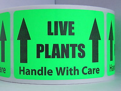 Live Plants Handle With Care 2x3 Sticker Label Fluor. Green Bkgd 50 Labels