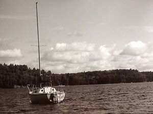 1983 DS 22 Sailboat - trades considered