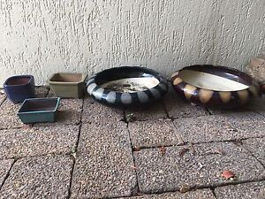 5x bonsai pots Maroochydore Maroochydore Area Preview