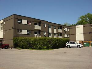 EIWO Canadian Management Ltd - 1 BEDROOM UNIT FOR RENT