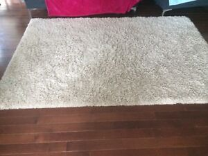 Creme color shag rug