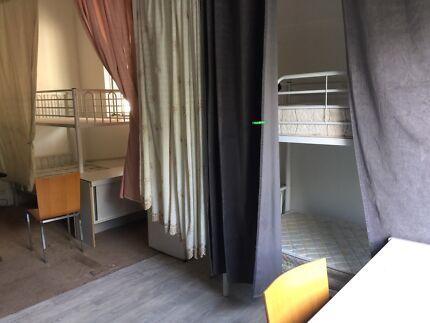 $120/week 2br Auburn 4people one room bunk bed Male preferred