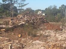 Remove extracted stump piles off acreage land Glen Innes Glen Innes Area Preview