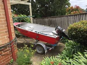 12ft aluminium tinnie 25HP Manly Manly Area Preview