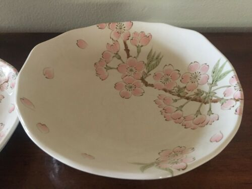 Set of 6 Mino Yaki Sakura Cherry Blossom Organic Edge Plates and Bowls