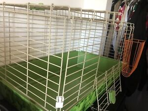 Nice size guinea pig cage