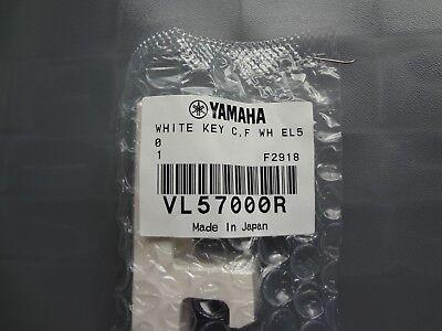 Yamaha C o F keyANIX1 CS6x EL25 EL50 MO6 PSR4000 PSR9000 QS300 Sy35 W7 VL57000R, usado segunda mano  Embacar hacia Spain