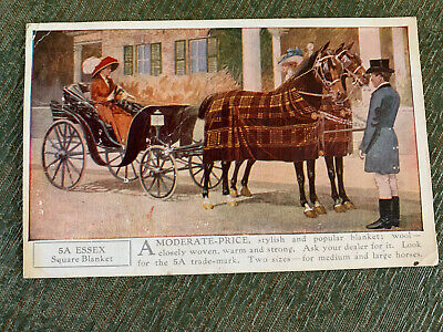 Vintage 1910 Advertising Postcard 5A Essex Square Horse Blankets