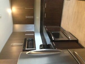 Trillium 2 bedroom apartment downtown 8th floor