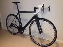 Apollo 2014 Victorian Institute of Sport Elite C Road Bike Wheelers Hill Monash Area Preview