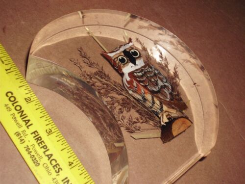 Painted Wooden Owl Glass Acrylic Paperweight Unique Canada Art Bird souvenir HTF
