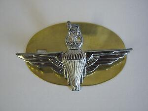 Parachute Regiment (Para) Cap Badge - British Army - Brass Base Metal