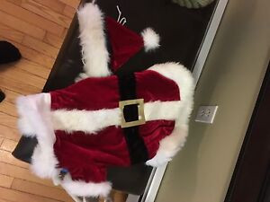 Dog/puppy Santa suit
