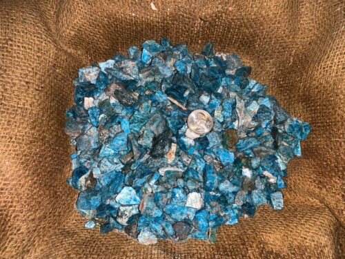 2000 Carat Lots of Unsearched SMALL Apatite Rough + a FREE Faceted Gemstone