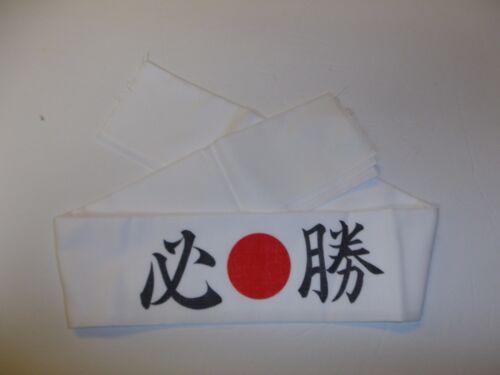 0380 Pilot headband WW 2 Japan Japanese R17B