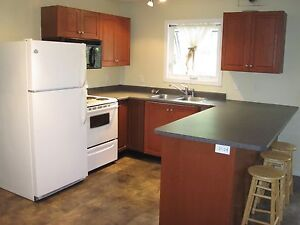 1 bedroom, 1 bath suite available for rent Sept 1
