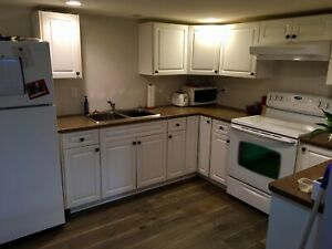 1 bedroom + den basement suite for rent
