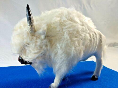 White Buffalo  8x6 white fur glass eyes. realistic toy