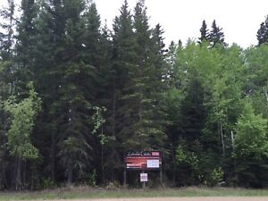 Beautifully Treed 70x208 ft Lot -Candle Lake -Walk to 3 Beaches