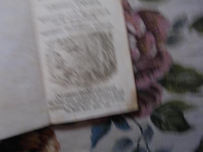 1752 ... Magazin 1 / Bergbau Balgmaschinen / Baumschnitt Schmersahl Gartenbau