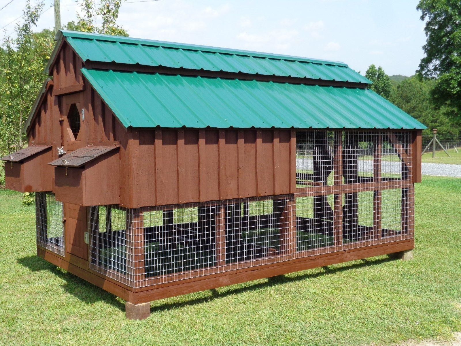 How to Build a Backyard Chicken Coop eBay