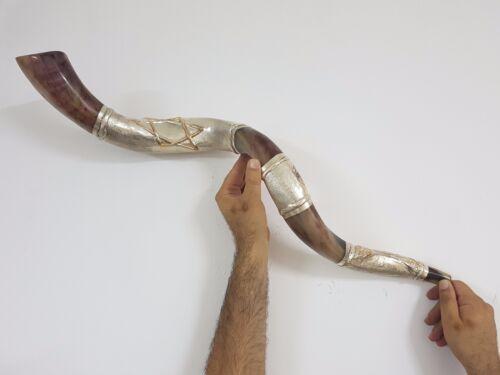 "Shofar Amazing Silver plated 36+"" Yemenite Horn Kudu Star Of David FREE BAG"