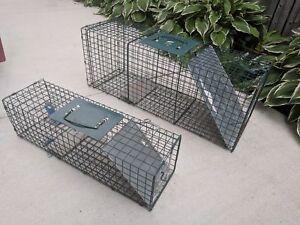 Animal Trap Rental