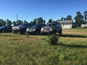 Looking for 93-98 grand Cherokee