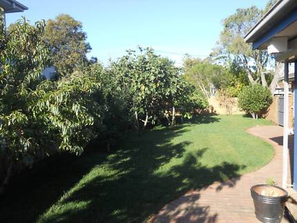 HOUSE FOR RENT for 2 months, BEAUMARIS Beaumaris Bayside Area Preview