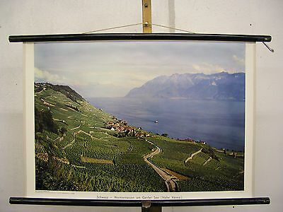Schulwandbild Switzerland Weinterrassen Am Geneva Lake Verey 75x50 Vintage Wall