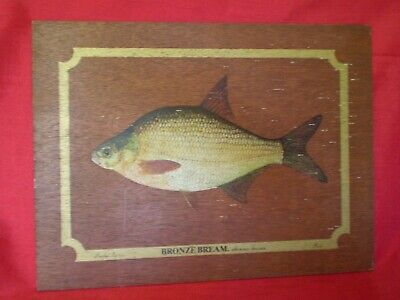 VINTAGE LIMITED EDITION WOODEN PANEL BY PARK, BRONZE BEAM FISH DESIGN