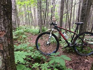 Trek Superfly 29er Carbon