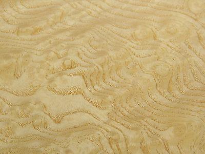 Ash Burl Raw Wood Veneer Sheets 7.25 X 14 Inches 142nd   Ifpa7368-18