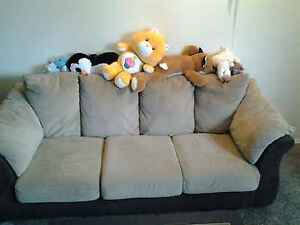 swade  couch
