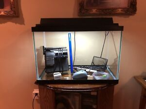 20 Gallon Aquarium/Fish Tank WITH EVERYTHING YOU NEED!