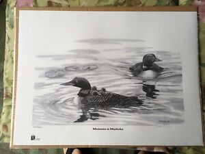 Moments in Muskoka Loon Ltd. Edition Print